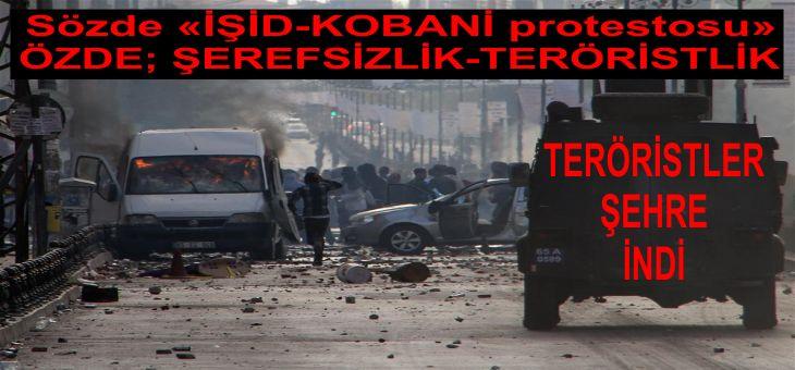 teroristler-kobaniyi-bahane-edip-sehirleri-yakti-yikti