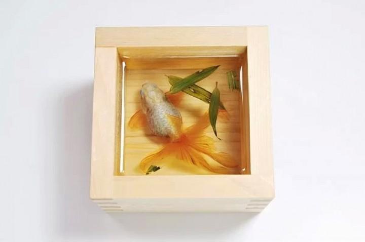 Riusuke Fukahori Japon bir japon balığı sanatçısı