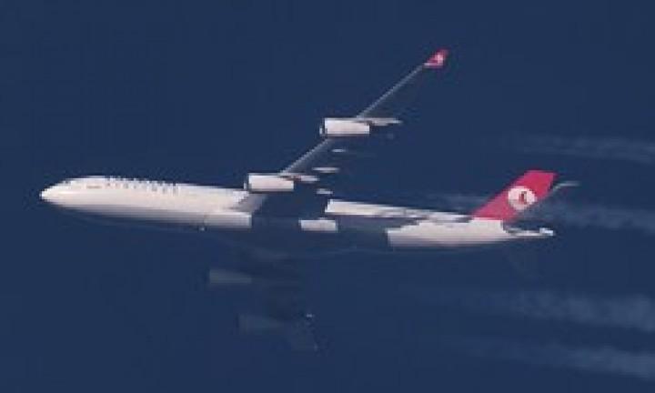 THY uçağı motoruna kuş çarptığı için geri döndü